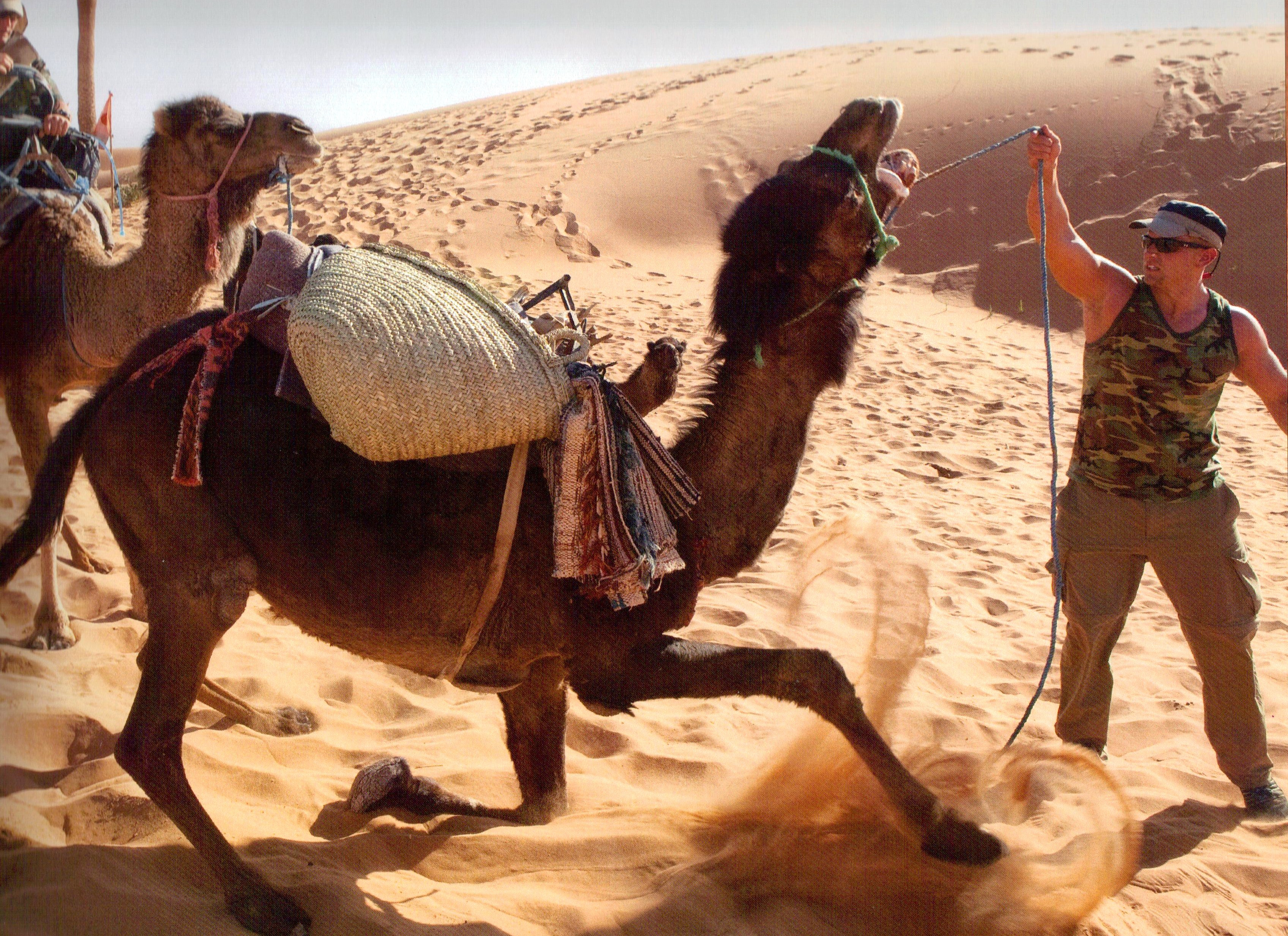 Coutry Boys Camels 001